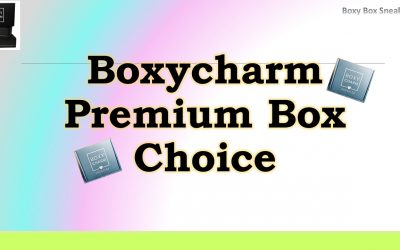Boxycharm Premium January 2021 (1st Choice Item)