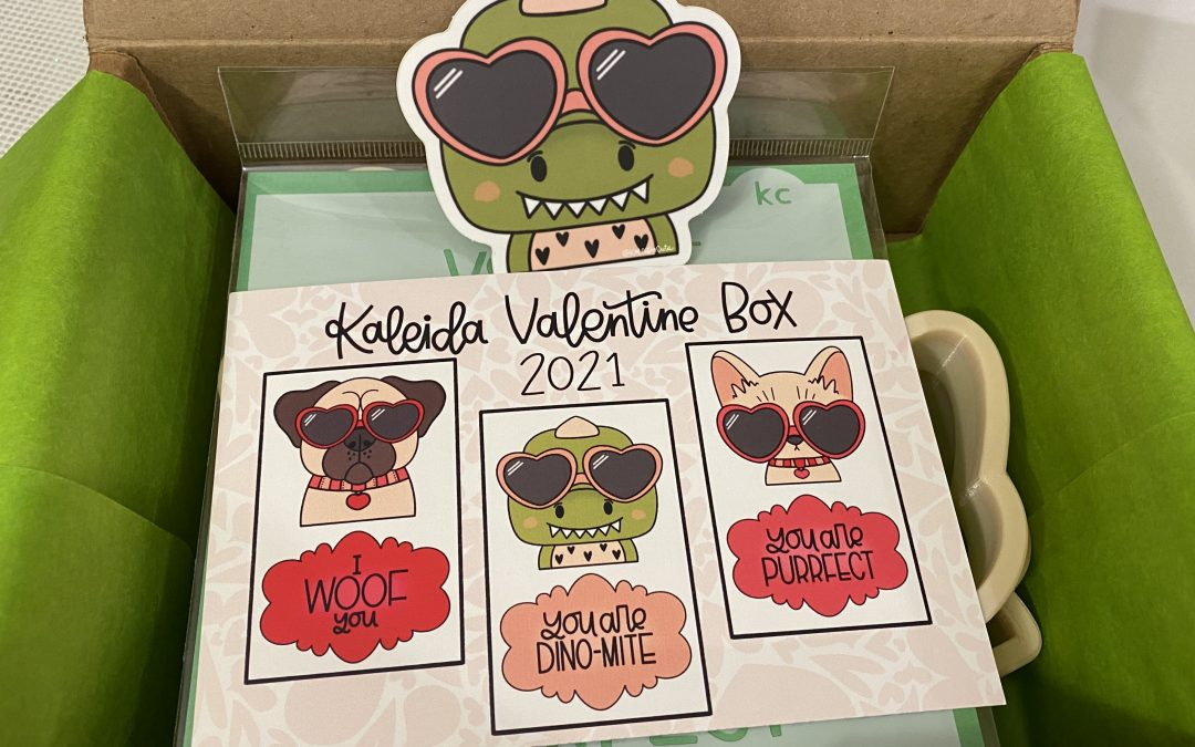 Cookie Cutter Subscription?! – First Unboxing Valentines Box 2021 – Kaleida Cuts